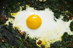 Fried egg and spinaches Royalty Free Stock Photography