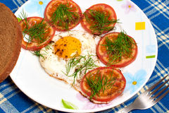 Plate with fried egg and tomatos Royalty Free Stock Photo