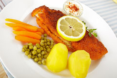 Fish and potatoes Royalty Free Stock Images