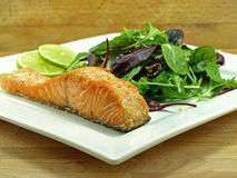 Plate of fried salmon fillet Royalty Free Stock Image