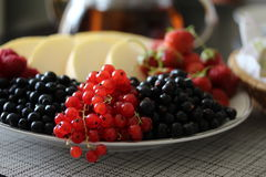 A plate of fruits and red currants on the foreground. Royalty Free Stock Images