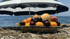 Plate with fruits at sea background. Plate with different fruits stands under the umbrella at the stone beach. Beautiful blue sea is on the background. Umbrella stock footage