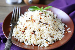 Plate full of cooked rice, white and wild Stock Photos