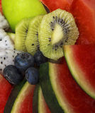 Plate full of fruits Stock Image