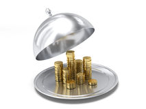 Plate full of money Royalty Free Stock Photo