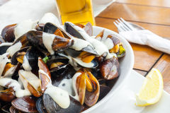 Plate full of mussels with garlic sauce Royalty Free Stock Photo