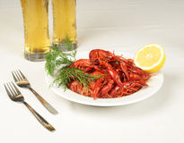 Plate full of river lobster. S with beer and lemon Stock Image