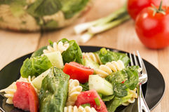 Plate full of spinach and rotini pasta salad Stock Image