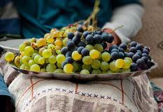 Plate of Grapes on the lap Royalty Free Stock Photography