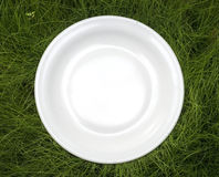 Plate on grass. Empty plate on green grass Stock Photos