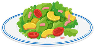 Plate of green salad Royalty Free Stock Photo