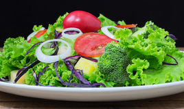 Plate of green salad with vegetables. On white plate Stock Images