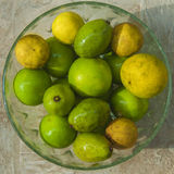 Plate with green and yellow citrus fruits Royalty Free Stock Images
