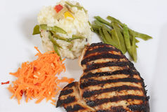 Plate of grilled chicken with risotto royalty free stock images