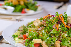 Plate of healthy leafy green salad with croutons Royalty Free Stock Photography