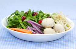 Plate of healthy vegetables Royalty Free Stock Photography