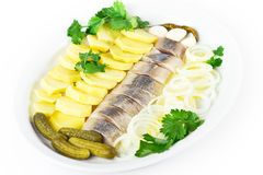 Plate of herring fish fillets with vegetables. Plate of herring fish fillets with potato and onion on white background Royalty Free Stock Photography