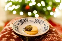 Shortbread cookies with bokeh. Plate of holiday shortbread chocolate dipped cookies with Christmas tree bokeh background Royalty Free Stock Images