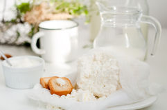 Plate of homemade cottage cheese Royalty Free Stock Photos