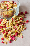 Plate of homemade muesli with cornflakes, freezedried cranberry, cashew, candied fruit, raisins. Stock Images