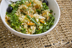Plate of homemade rice with vegetables Royalty Free Stock Photos