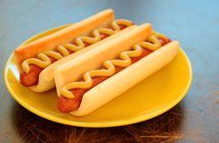 Plate with hot dogs Stock Image