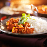 Plate of indian chicken vindaloo Royalty Free Stock Photo