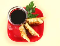 Plate of Juicy Chinese Fried Potstickers stock photos