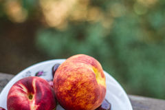 Plate with juicy peaches and cherries on natural background. Royalty Free Stock Images