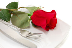 Plate with a knife, fork and a red rose Royalty Free Stock Photography