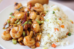 Plate of kung pao shrimp Stock Images