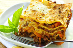 Plate of lasagna royalty free stock image