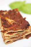 Plate of lasagna Royalty Free Stock Photography