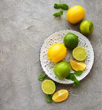Plate with lemons and limes Royalty Free Stock Photography