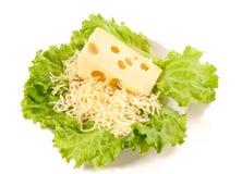 A plate of lettuce, maasdam Stock Photo