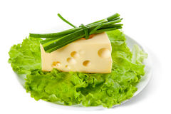 Plate of lettuce, maasdam and onion Stock Photography