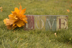 Plate with -LOVE-. Plaque with the inscription love stands on a meadow in the grass Stock Image