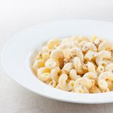 Plate of macaroni with cheese sauce Stock Image