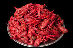 Plate with many crawfish Royalty Free Stock Photo