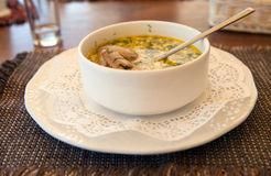 Plate of meat soup Stock Images