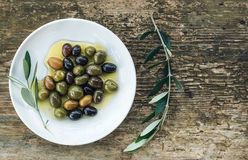 Plate of Mediterranean olives in oil with tree branch Royalty Free Stock Photography