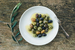 A plate of Mediterranean olives in olive oil with a branch of ol Stock Photography