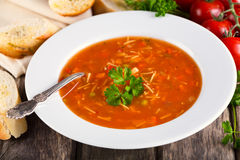 Plate of Minestrone Soup Royalty Free Stock Image