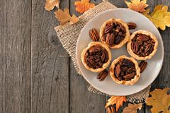 Plate of pecan pie tarts, overhead table scene on wood royalty free stock photography