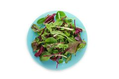 Plate with mix of salads. On white background Stock Image