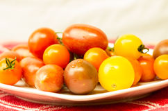 Plate of mixed tomtoes on cloth Stock Photos