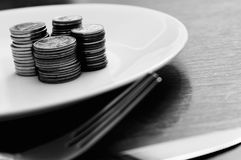 Food Plate Money Concept. A plate of money food concept with nobody royalty free stock image