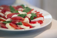 Plate with mozarella and tomato. Close-up of a plate with mozarella, tomato and basil Stock Images