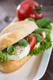Plate with Mozzarella Baguette Royalty Free Stock Images