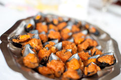 Plate of mussels Stock Image